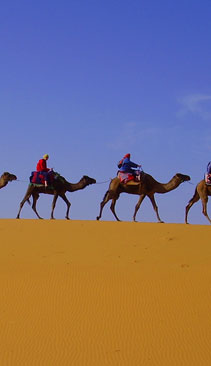 Magic of Morocco